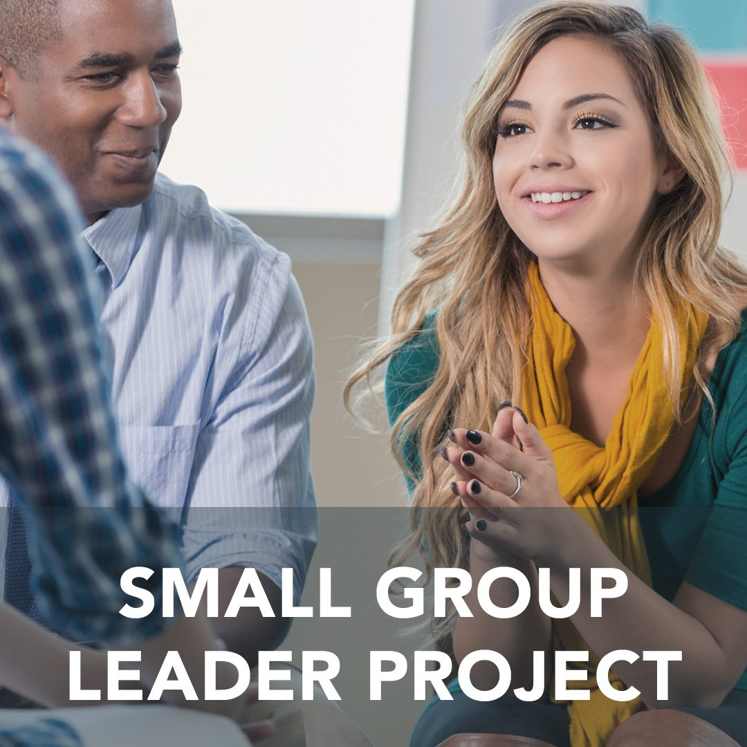 Small Group Leader Project
